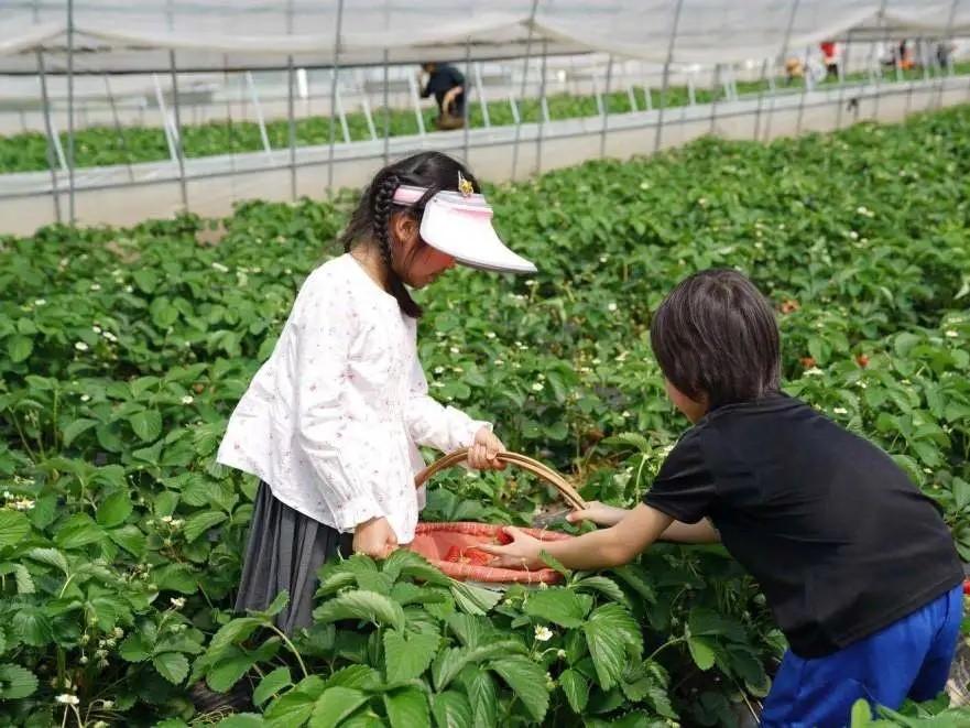 https://level8cases.oss-cn-hangzhou.aliyuncs.com/14-898da01d-e695-4444-a263-0a469dbbaf7c.jpg
